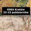 OSEA czyli Ogólnopolskie Spotkanie Edukacji Alternatywnej